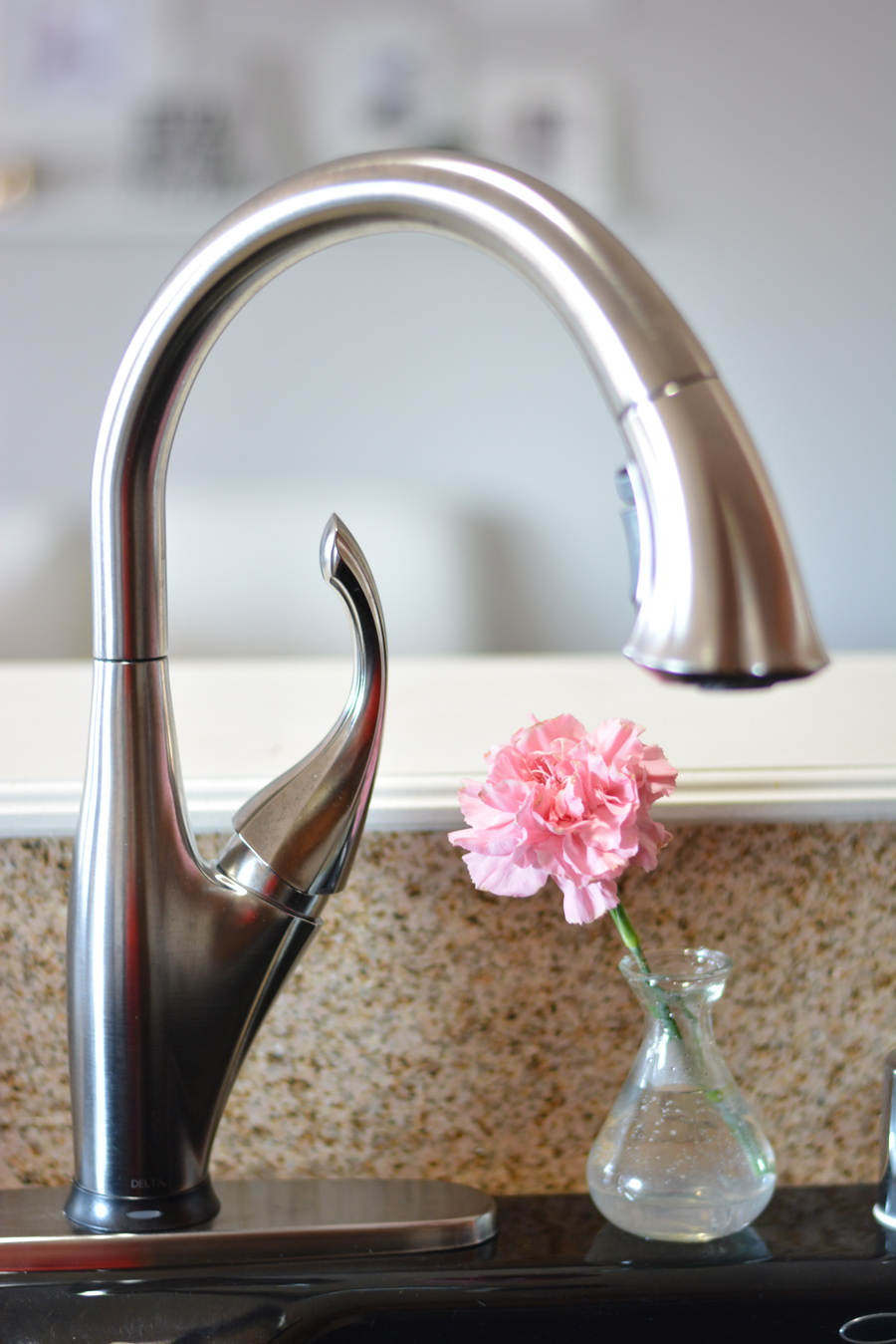 DIY Kitchen Inspiration New Delta Faucet Installed